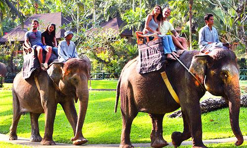 Tempat wisata naik gajah di Bali