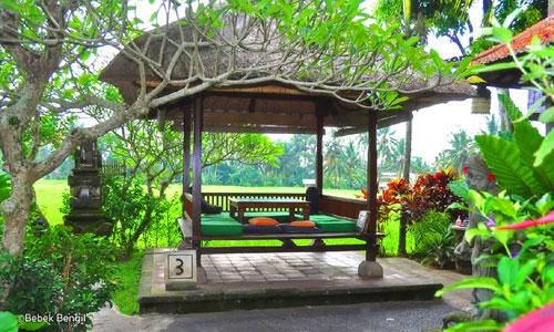Gazebo tempat dan view sawah di Bebek Bengil Ubud