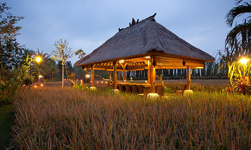 Restoran Bebek Tepi Sawah di Ubud Bali