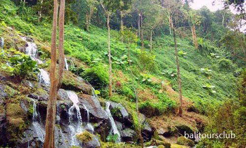 Air Terjun Langgahan di Kintamani