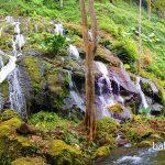 Air Terjun Pelisan di desa Langgahan