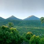 Desa Munduk Singaraja - Buleleng