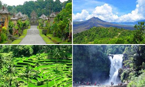 Paket Kintamani - Desa Penglipuran Tour