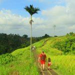 Tempat wisata Instagramable dan hits di Ubud