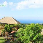 Tempat wisata rumah pohon Bali