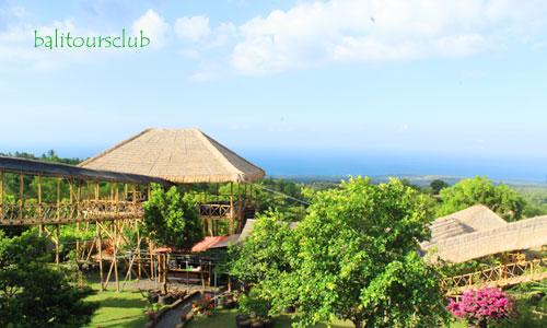 Tempat wisata rumah pohon di Bali