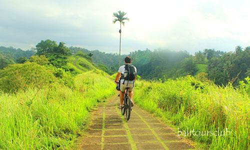 Tempat wisata gratis di Ubud
