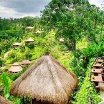 Agrowisata di pulau Bali