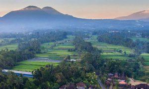 Desa wisata Pinge Tabanan