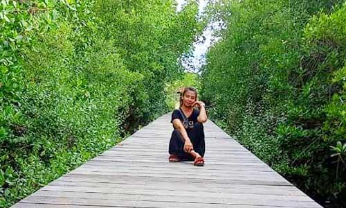 Hutan Mangrove di Jembrana Bali