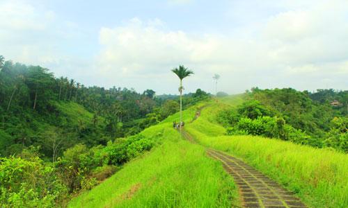Tempat hiking di Bali