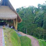Tempat nongkrong murah di UBud